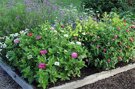 17 Best images about Garden cutting garden on Pinterest Gardens