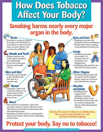 Pin by IHR's Tobacco Projects on Posters!   Body organs