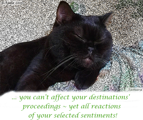 ... you can't affect your #destinations' proceedings ~ yet all reactions of your selected #sentiments!