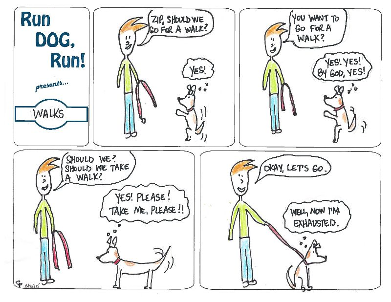 Run Dog Run Comic Walks Dogs Funny Dogs Running
