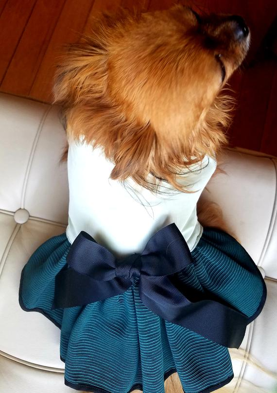 9a65888e Green on green Dog Dress ~Fancy Dog ~Puppy ~Pet Apparel ~Cute Dog Clothes  ~Couture Pet ~Dog Outfit ~