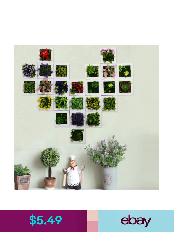 Decoration Artificial Plant Frame Succulents Wall Hanging Plant Box Flower Hanging Flower Wall Succulent Wall Hanging Framed Plants
