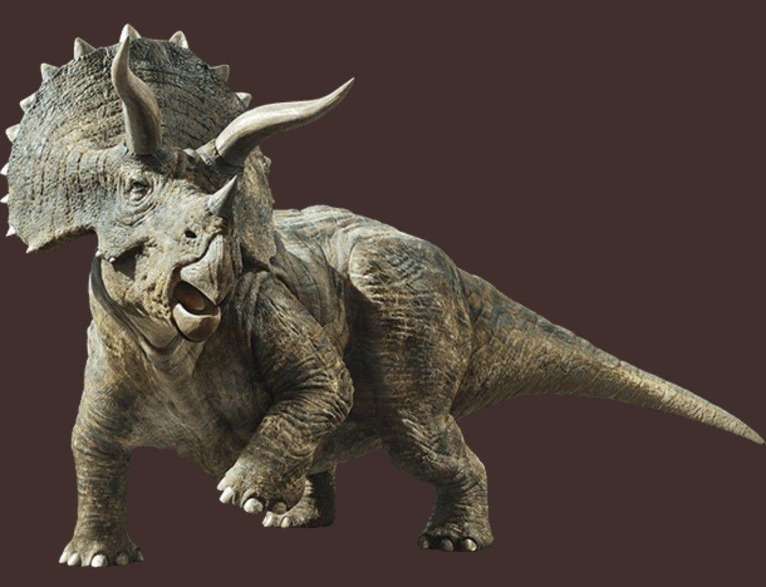 Anu 3d Name Wallpaper Jurassic World Fallen Kingdom Full Photo Of The
