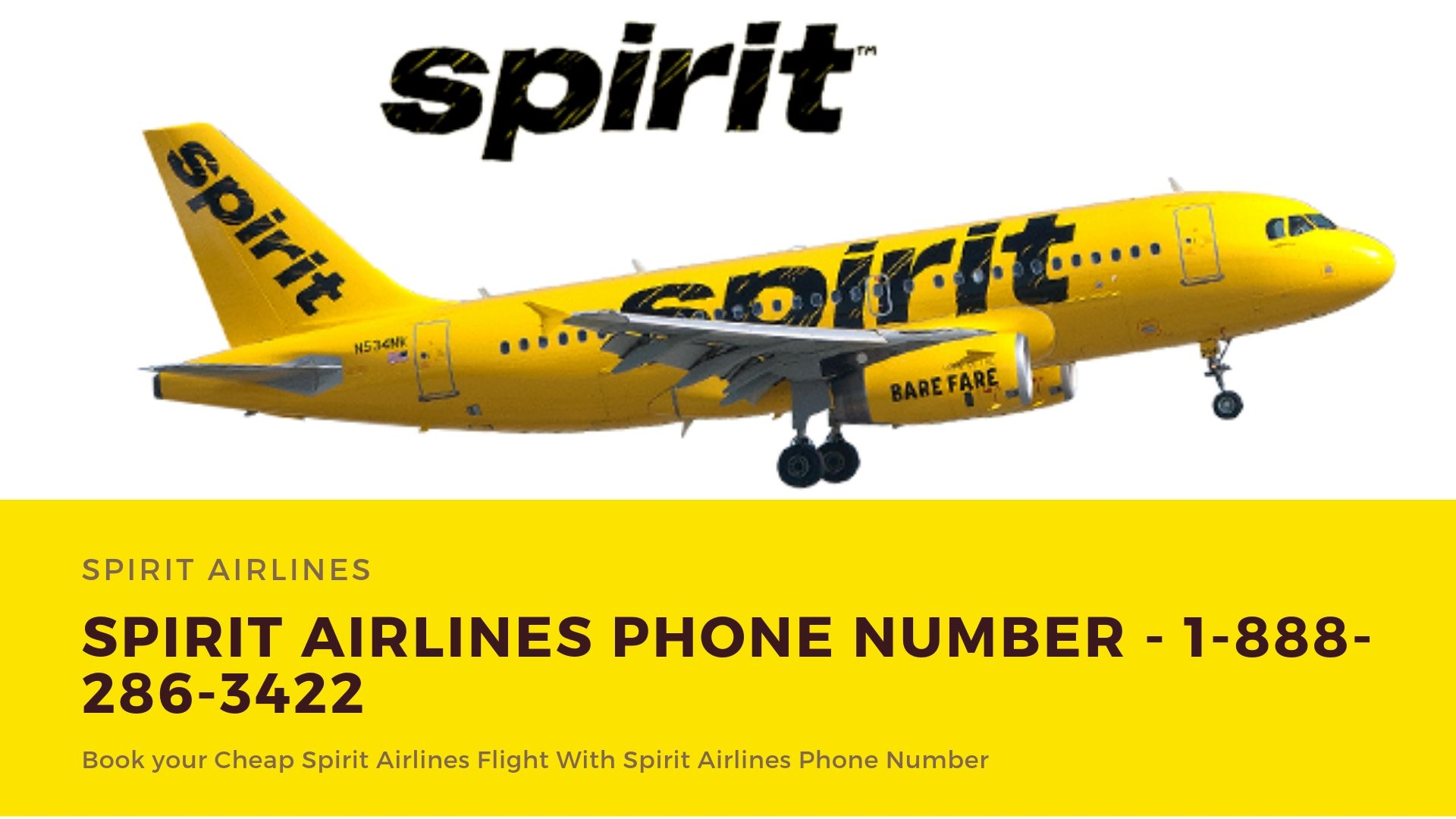 Air Travel Info (Flycoair) on Spirit airlines, Airlines