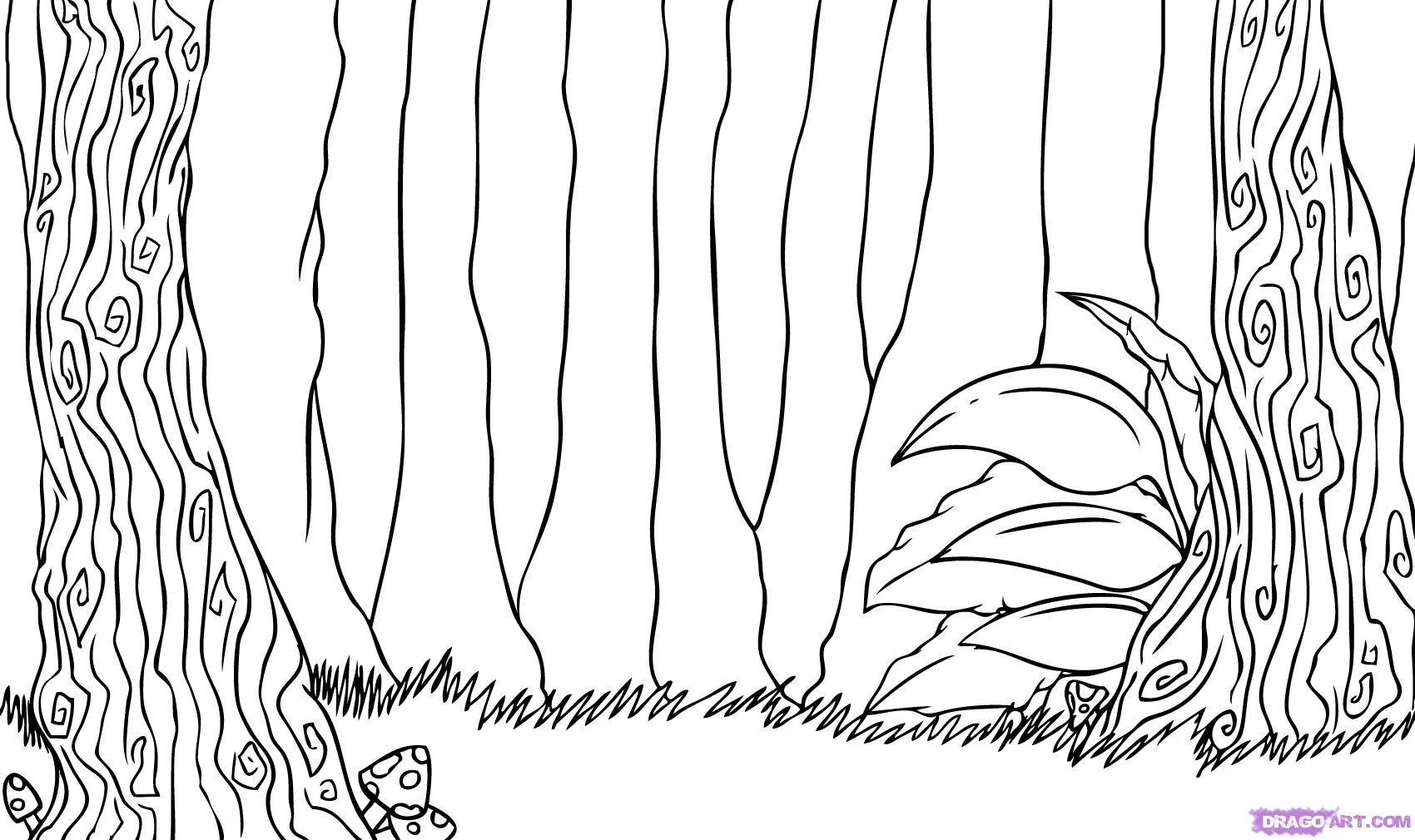 Advanced forests Coloring Pages | easy scenery drawings for kids ...