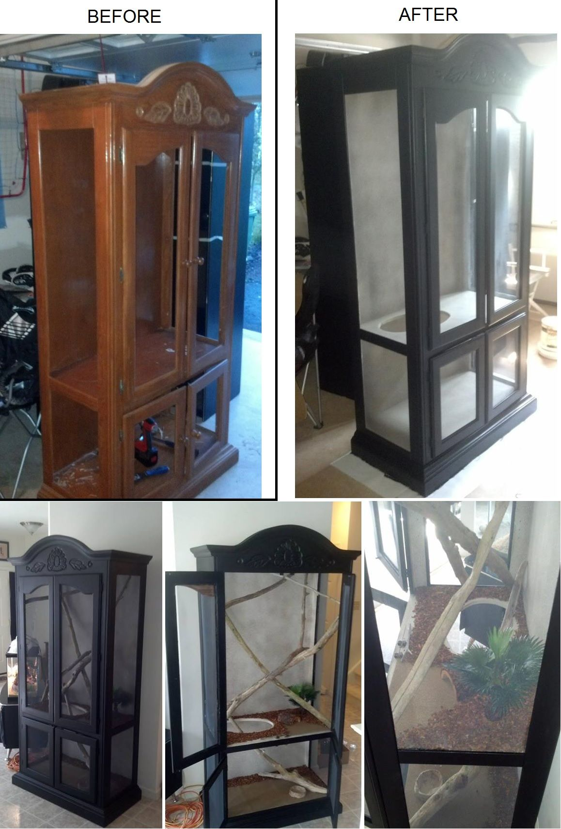 Turning an old curio cabinet into a custom reptile enclosure to look