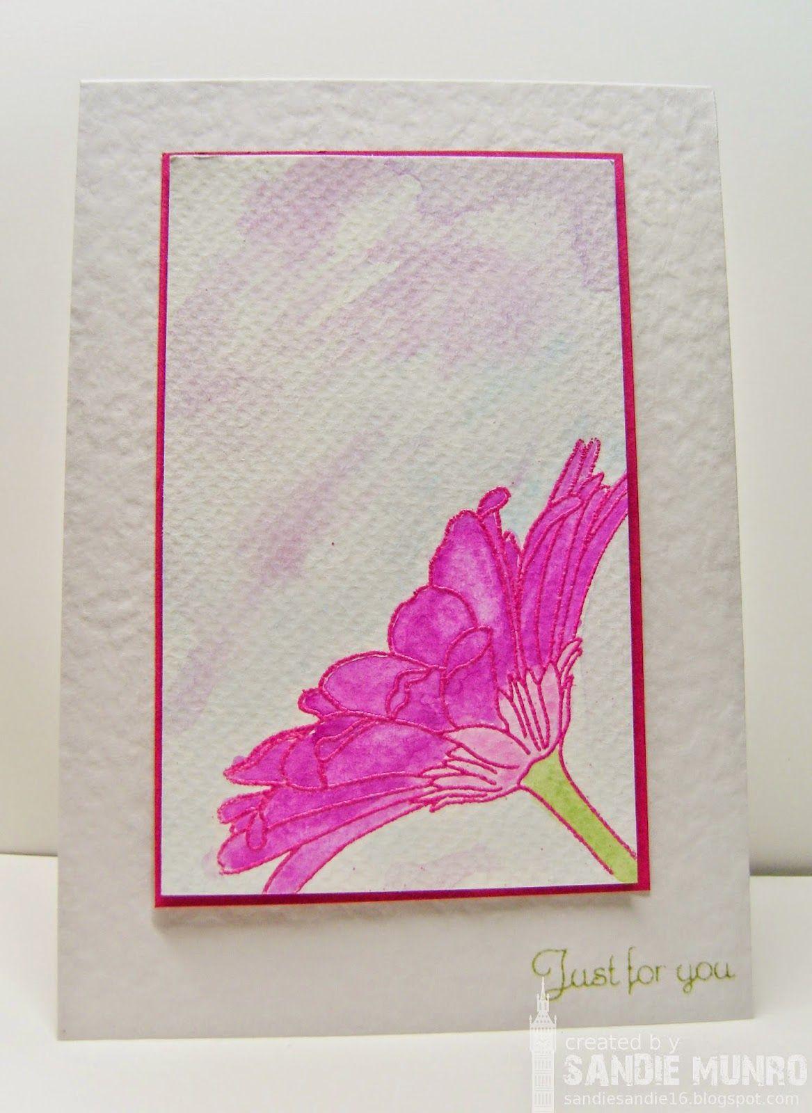 Gerbera water colour wash  Stamping  Pinterest  Gerbera Flower