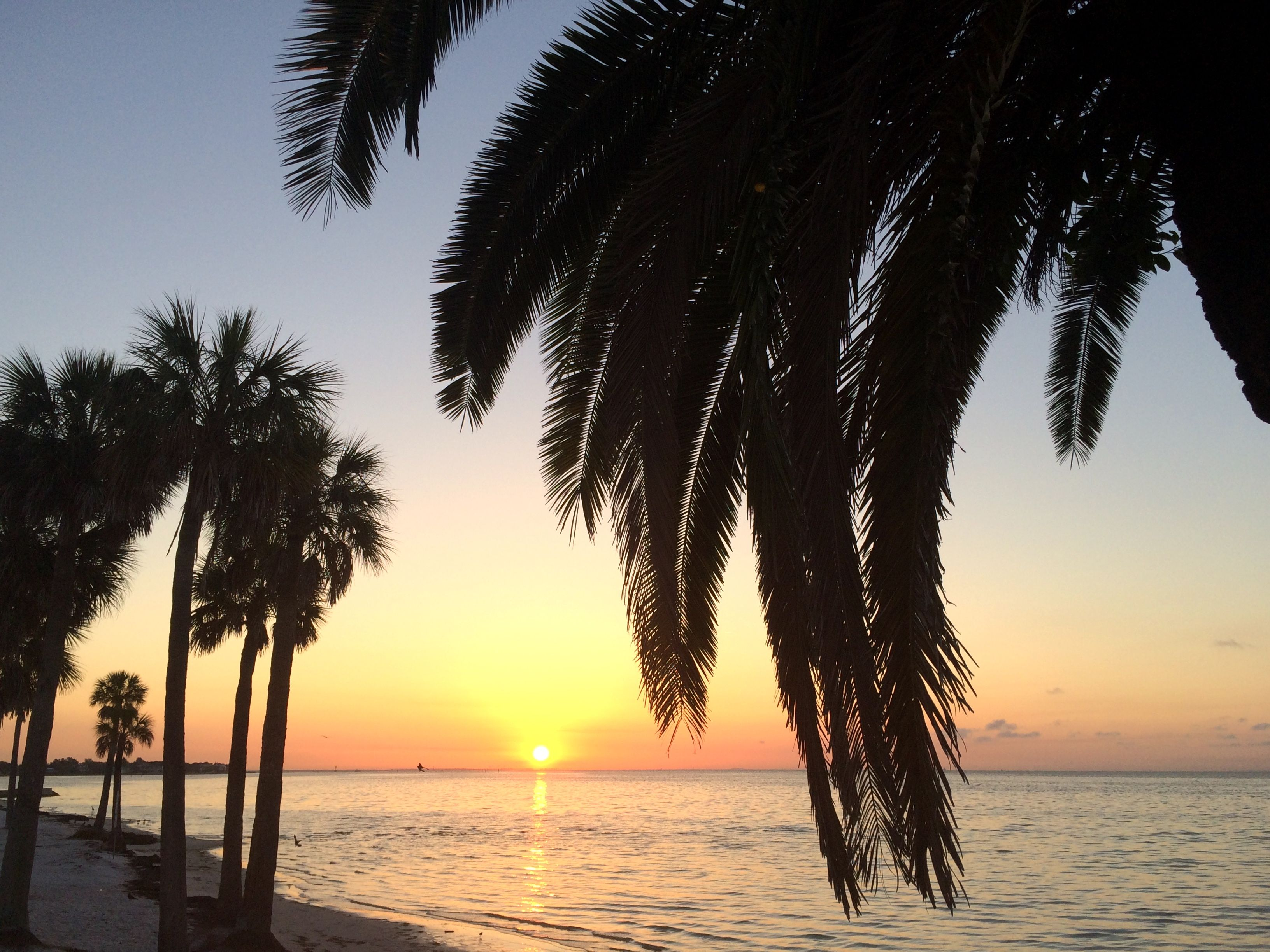 Sunrise from North Shore Park in St. Pete. Petersburg