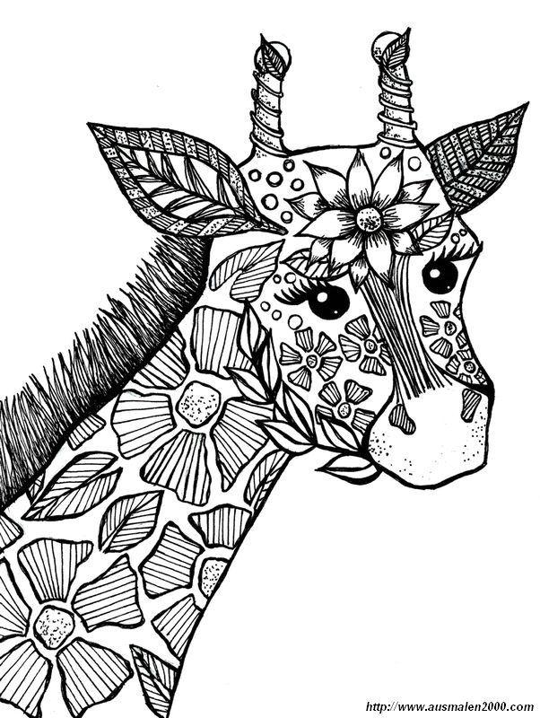 ausmalbild giraffe zum ausmalen  malvorlagen