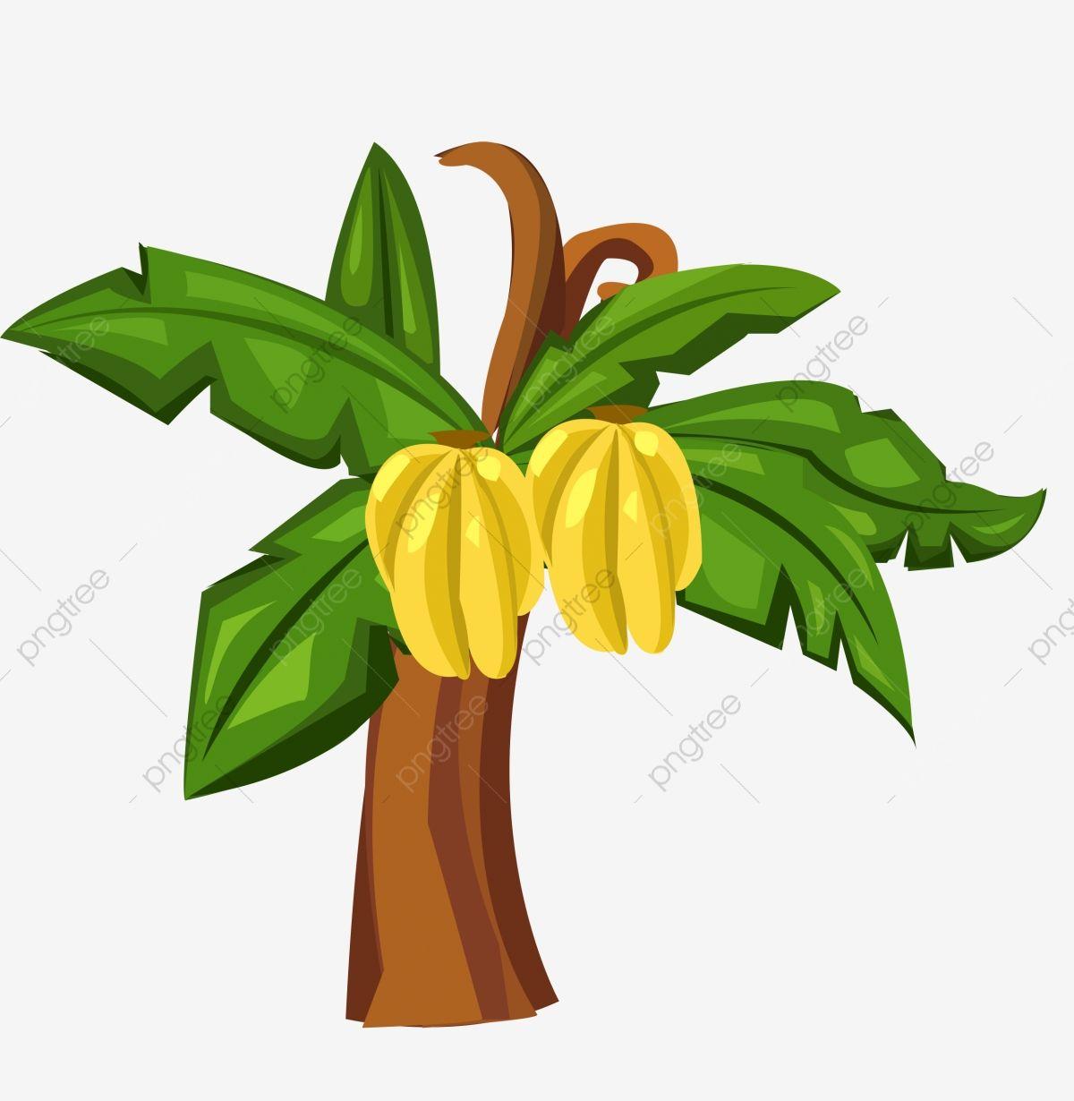 Banana Tree Cartoon Banana Tree Hand Drawn Banana Tree Cartoon Hand Drawn Banana Tree Tree Clipart Png Tree Illustration Png Transparent Clipart Image And Ps Hinh Nền