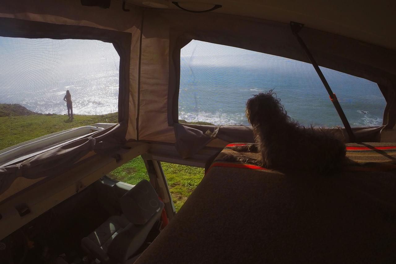 California Coast : Roadtripping With Dogs: Best Camping Spots :  TravelChannel.com