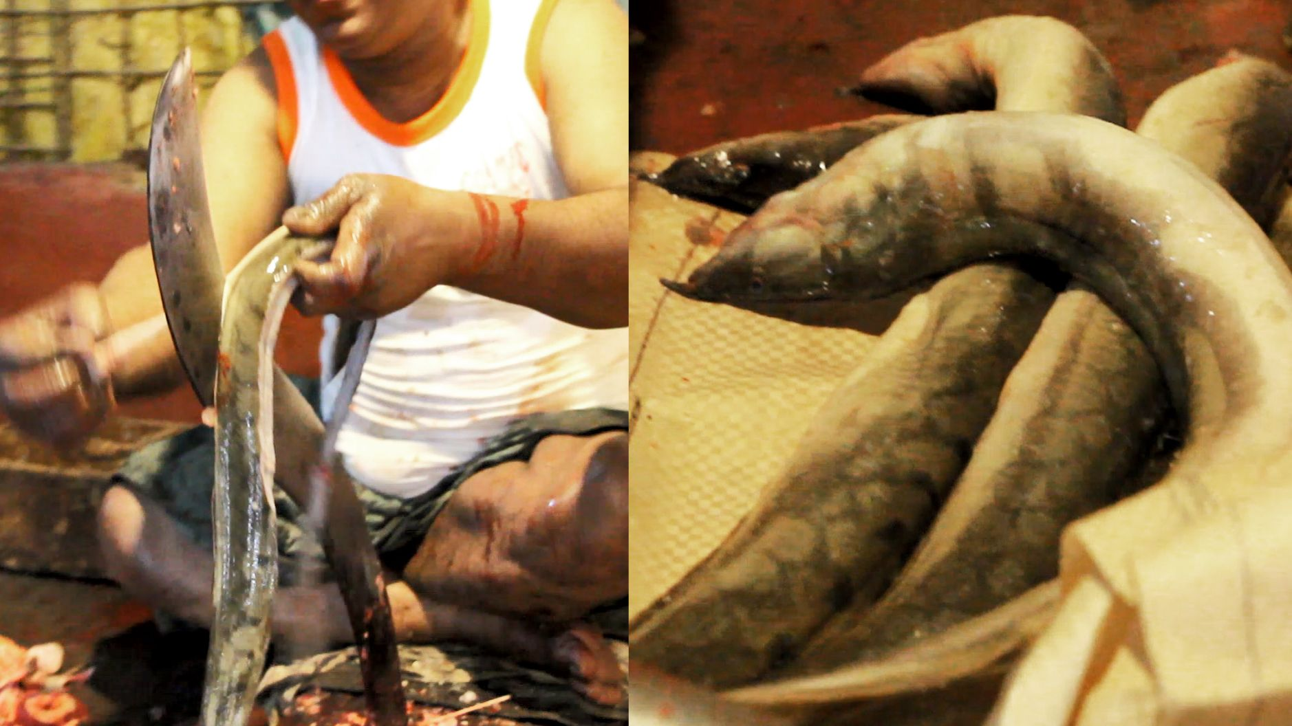 Amazing Zig Zag Eel Fish Slicing Fastest Tire Track Eel Skin Remove Video By Amarvideo Fish The Fish Market Amazing