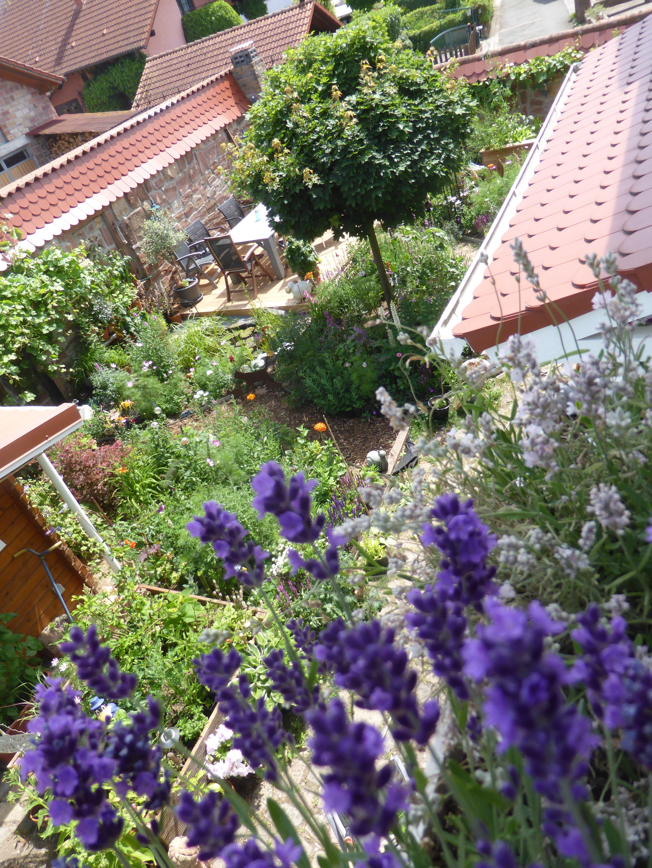 Inspirierend Garten Neu Anlegen Schema