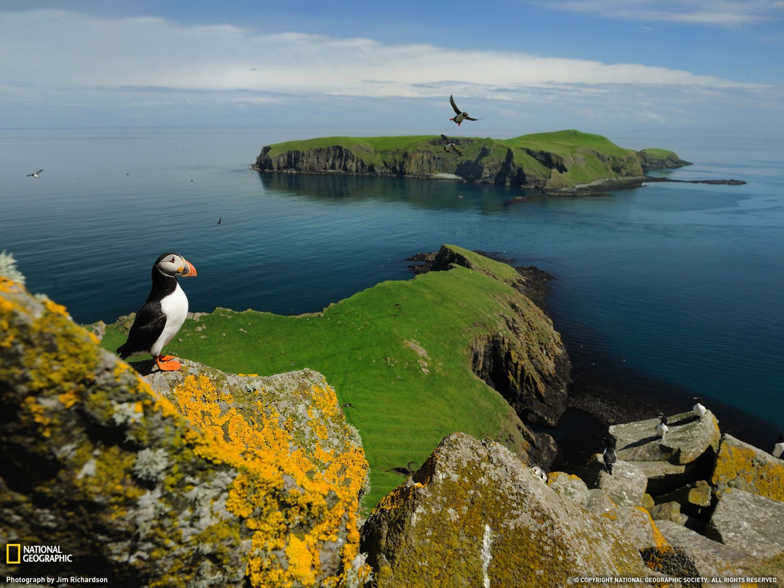 15 Breathtaking National Geographic Wallpapers National Geographic Wallpaper Island Wallpaper Sea Birds