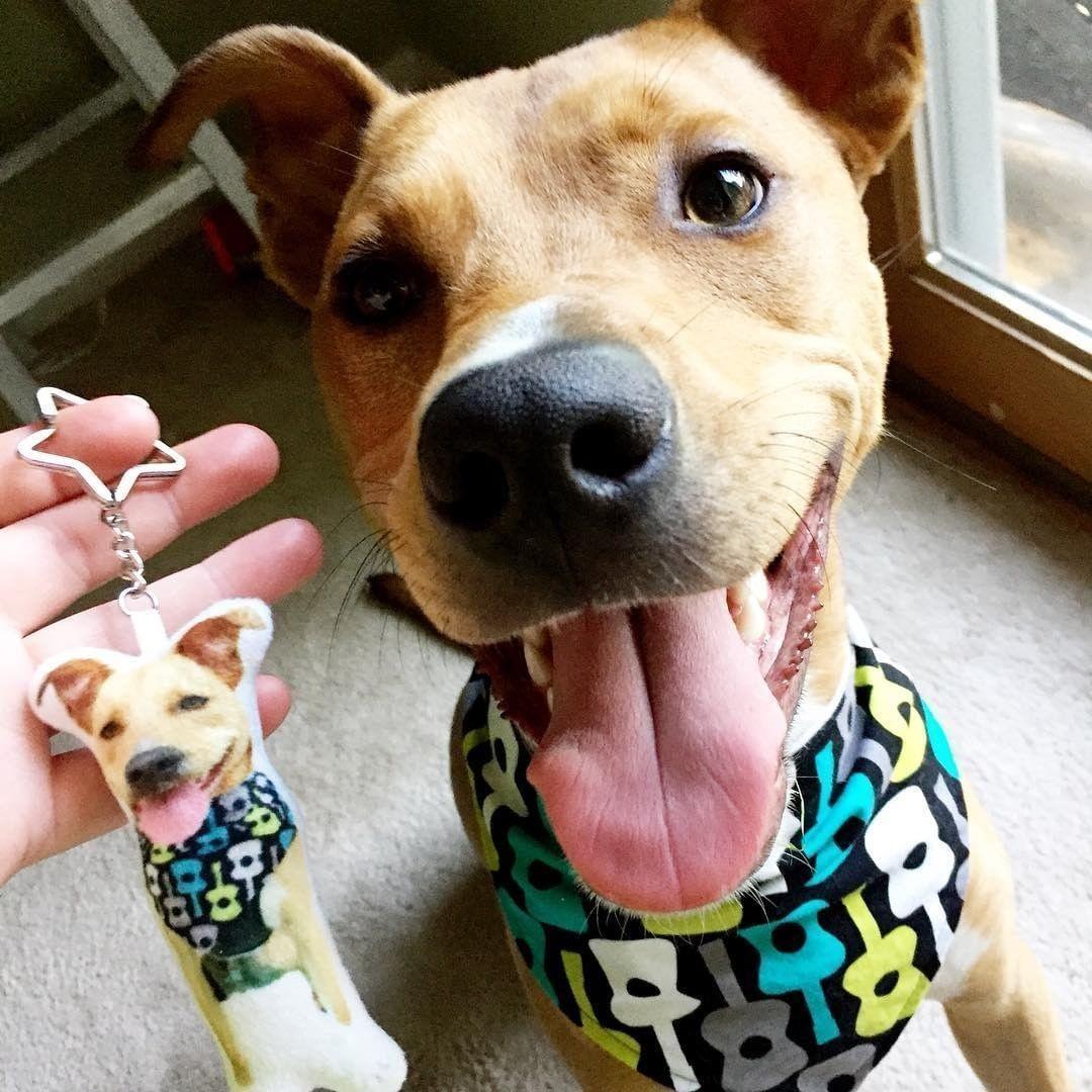 Custom Mini Me Pet Key Chain Personalized pet, Pet photo