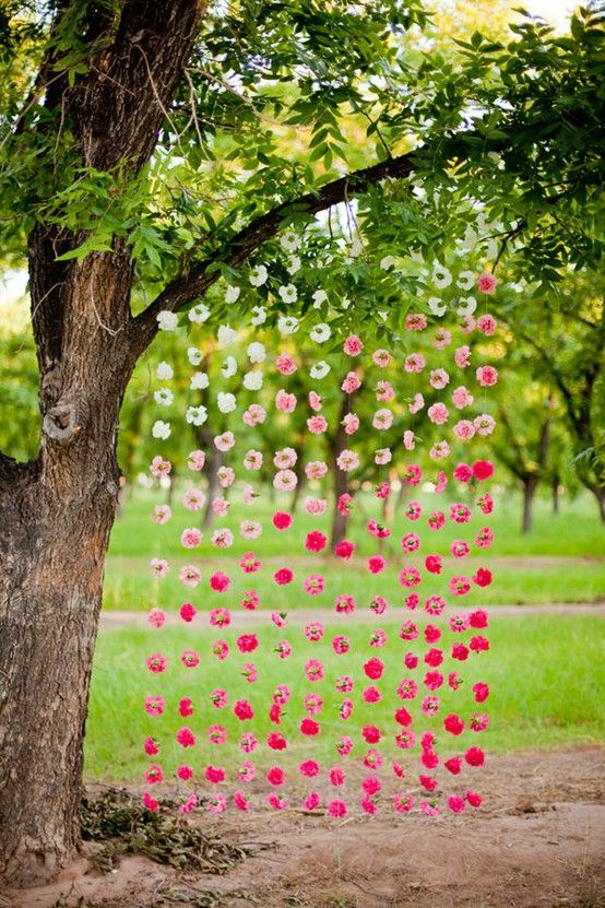 What if we hung full stems of hot pink roses or even hydrangeas. More cost effective than the wall pictures and we could tie on some really long ribbons in coordinating colors to mix in as well