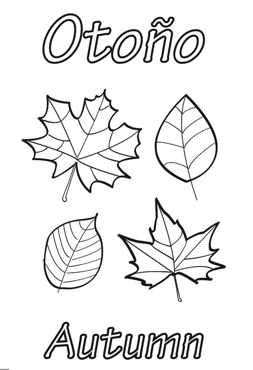 Hojas de otoño para colorear | Thanksgiving | Pinterest | Autumn ...