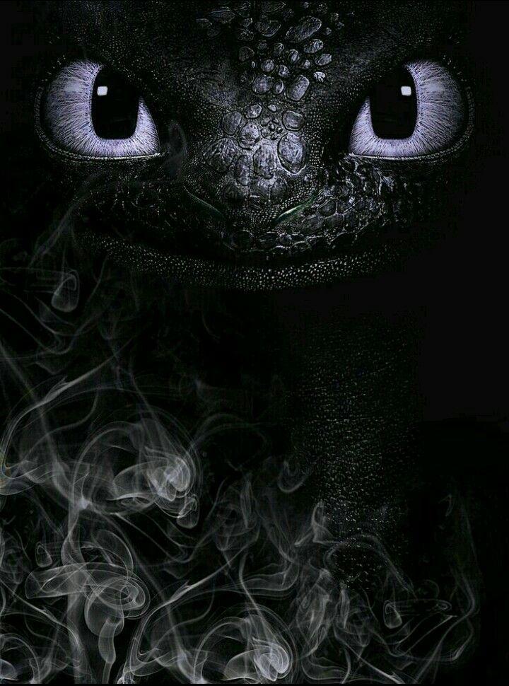 Silver Otro Furia Nocturna Fotos De Chimuelo Dibujos Bonitos Dragones