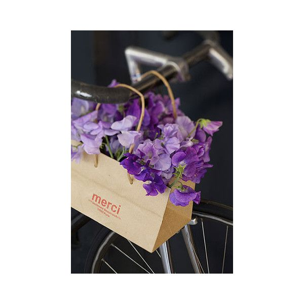 Merci, shopping à Paris ❤ liked on Polyvore featuring pictures, flowers, backgrounds, photos and purple