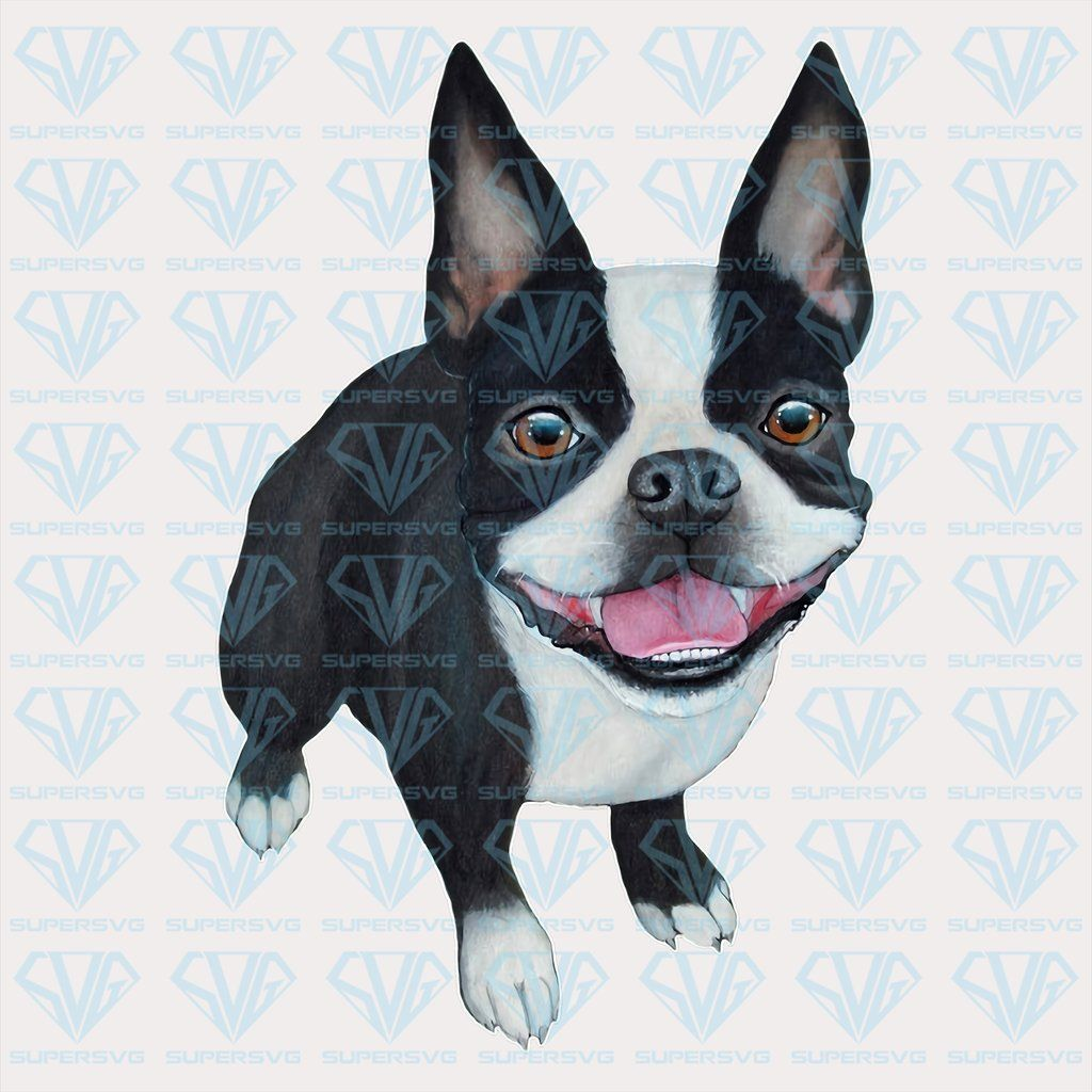 Boston Terrier Png Instant Download Supersvg Boston Terrier Terrier Cute Dogs