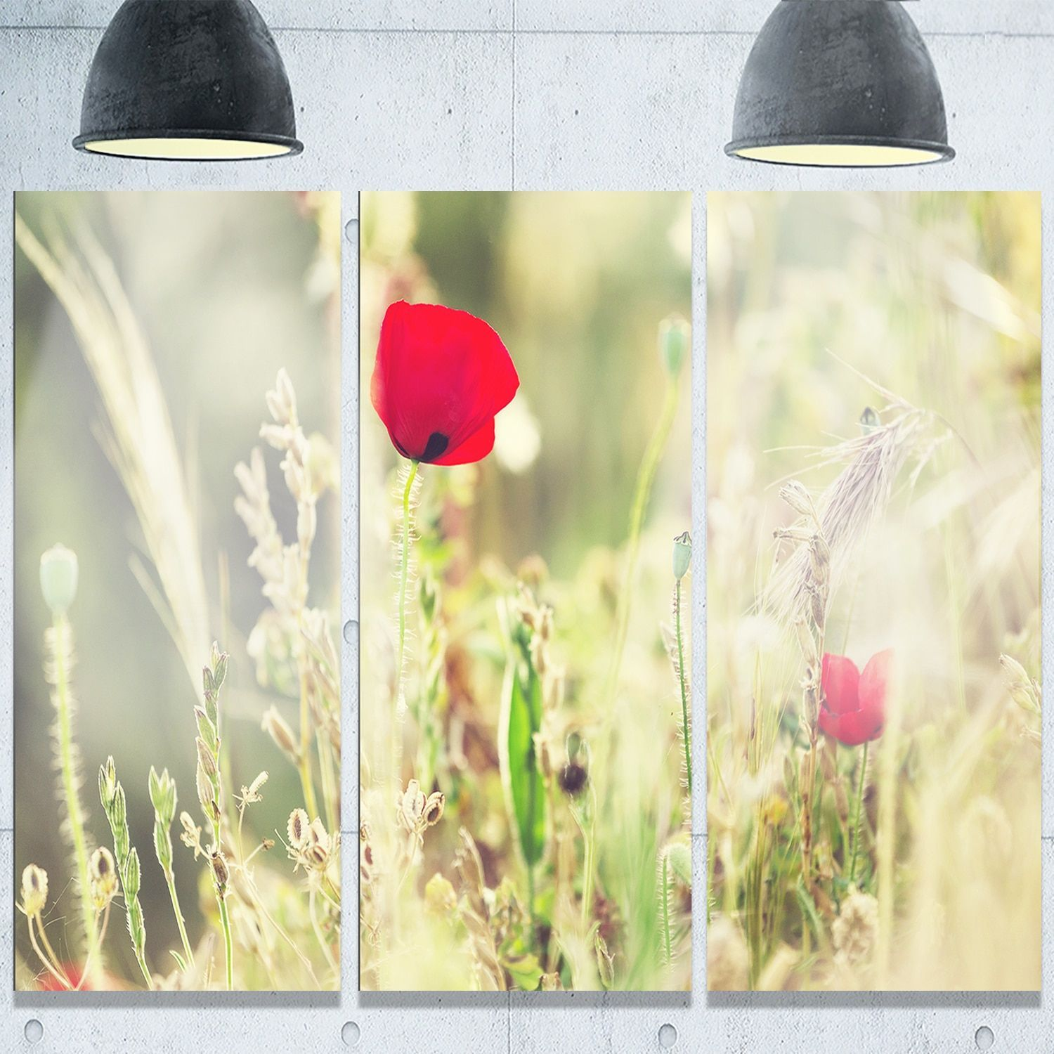 Designart \'Meadow with Wild Poppy Flowers\' Large Flower Metal Wall ...