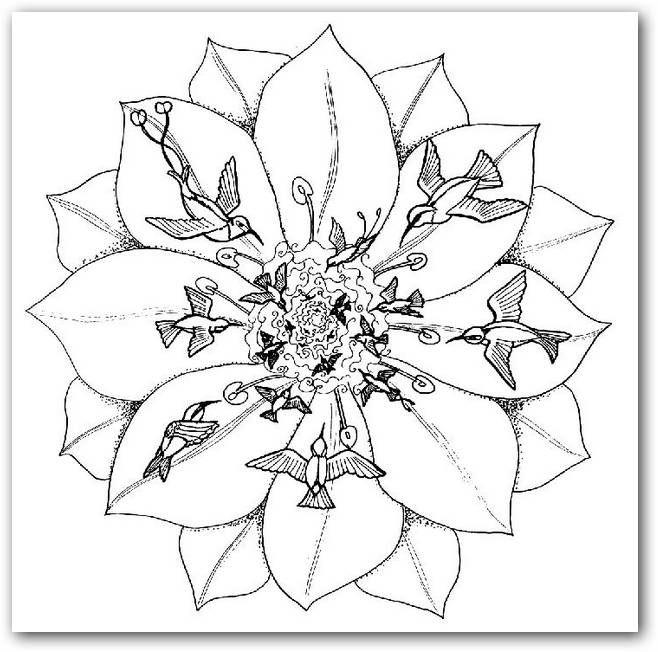 Estrella Celta Dibujos De Mandala Para Colorear Images Pelautscom ...