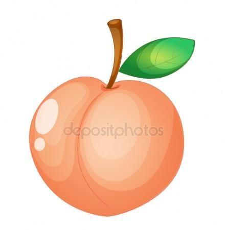Download - Fruit illustration — Stock Illustration #9995730