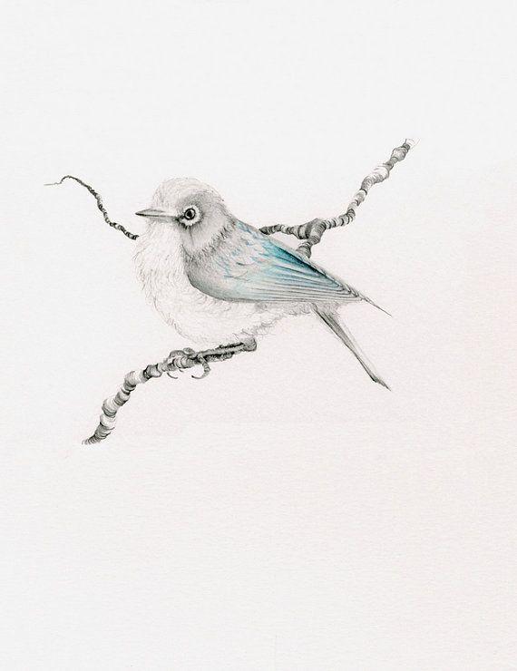Blue Bird Wall Art Blue Bird Illustration Bird Drawing