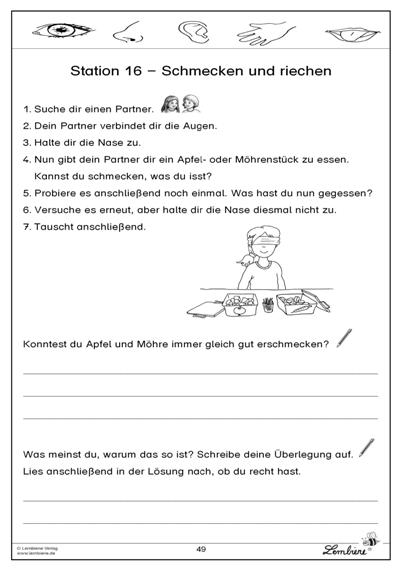 Auge Grundschule Arbeitsblatt Kostenlos : Schmecken und riechen sachunterricht pinterest