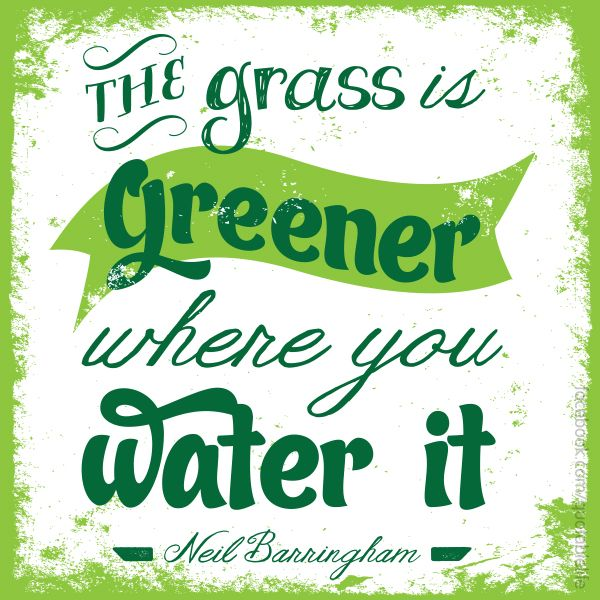 """The #grass is greener where you water it."""" #LawnCare 