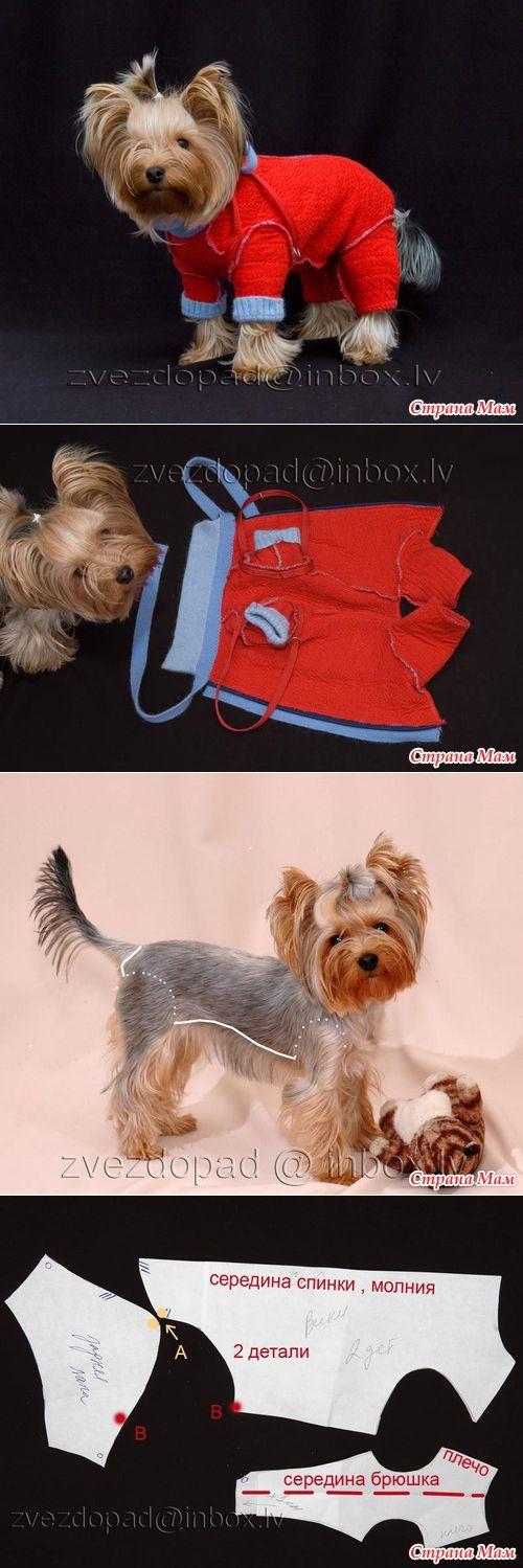 DIY dog clothes.