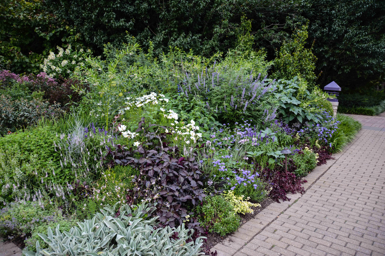 Olbrich Botanical Gardens   Madison Wisconsin, Thinking Outside The Boxwood