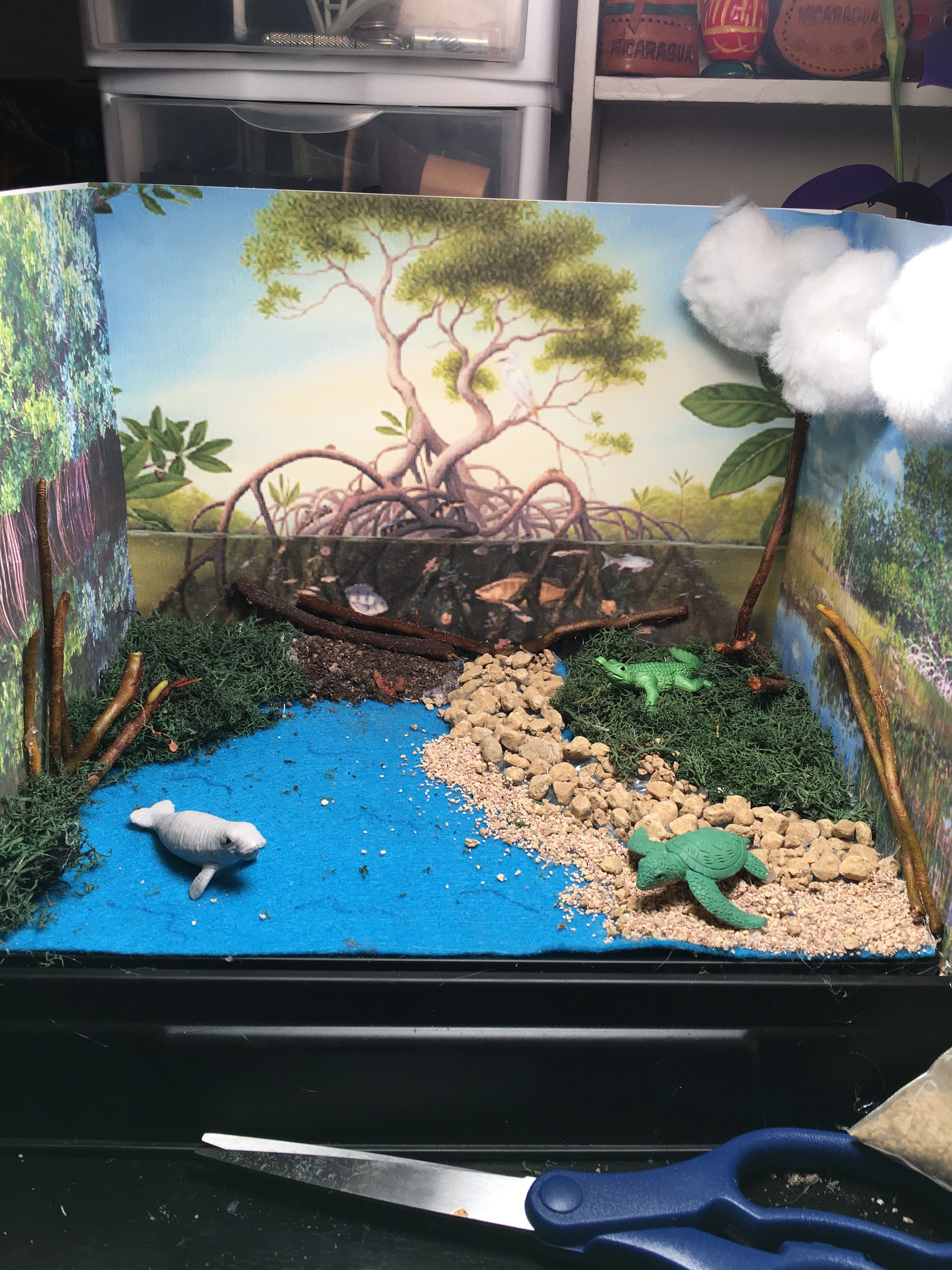 Everglades Diorama Habitat Project