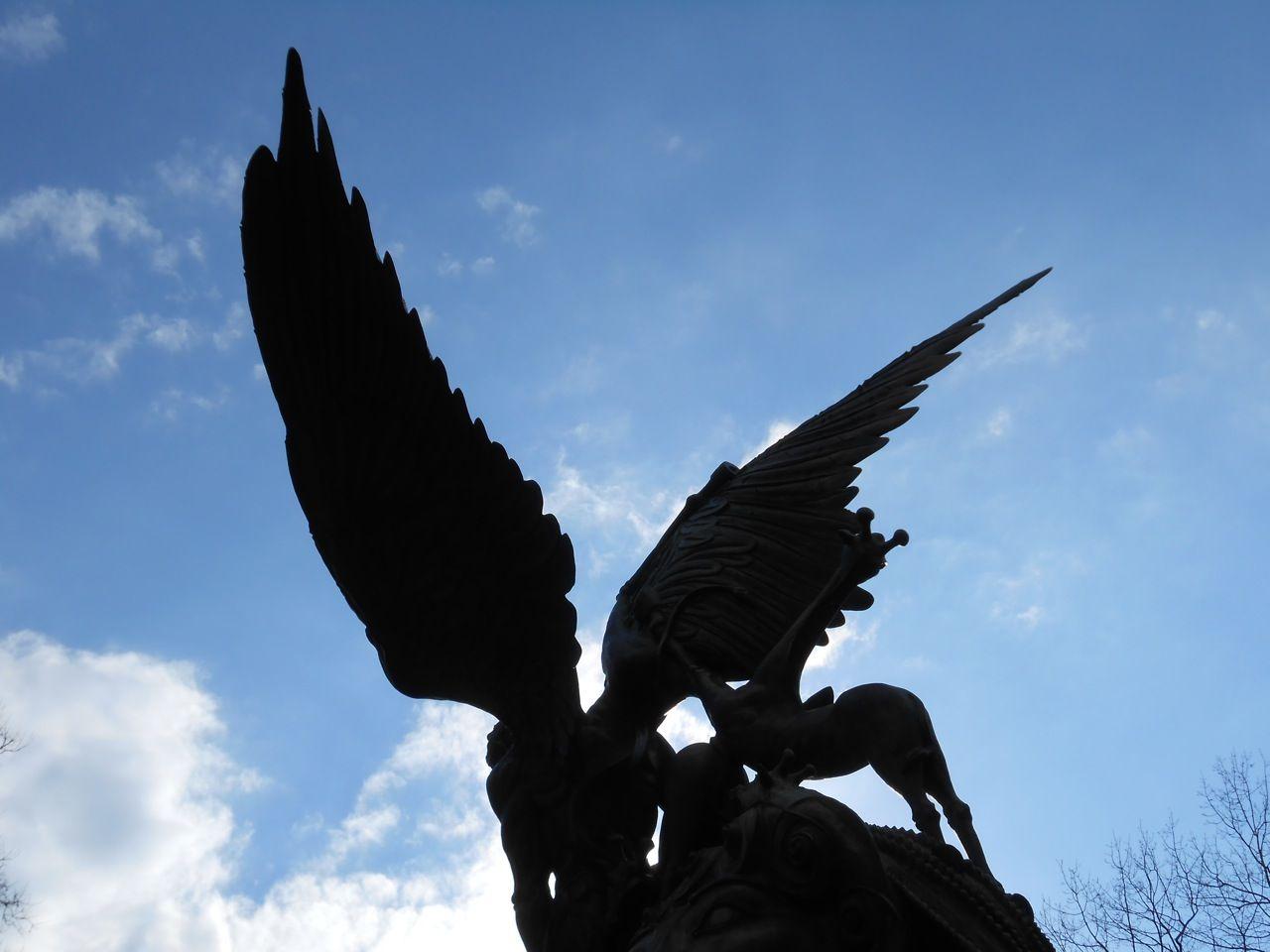 dark-wings1.jpg (1280×960)