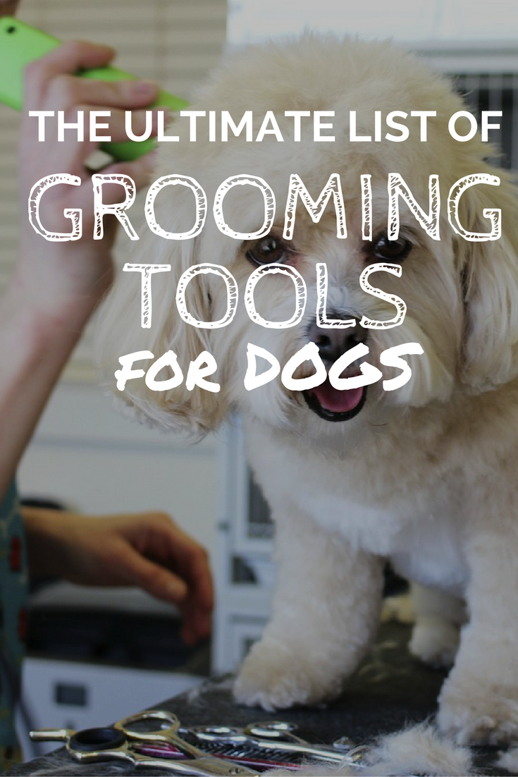 Best Dog Grooming Tools Supplies Your Essential Grooming Guide Dog Grooming Tools Dog Clippers Dog Grooming Salons