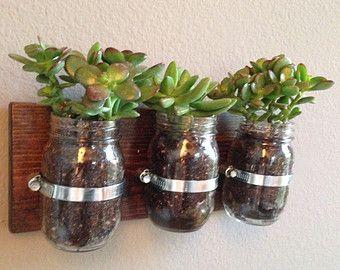 Rustic Mason Jar Succulent Planter - Indoor Herb Garden - Hanging Flower Arrangement
