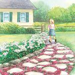 Magic Carpet Thyme Landscape Pinterest Flagstone