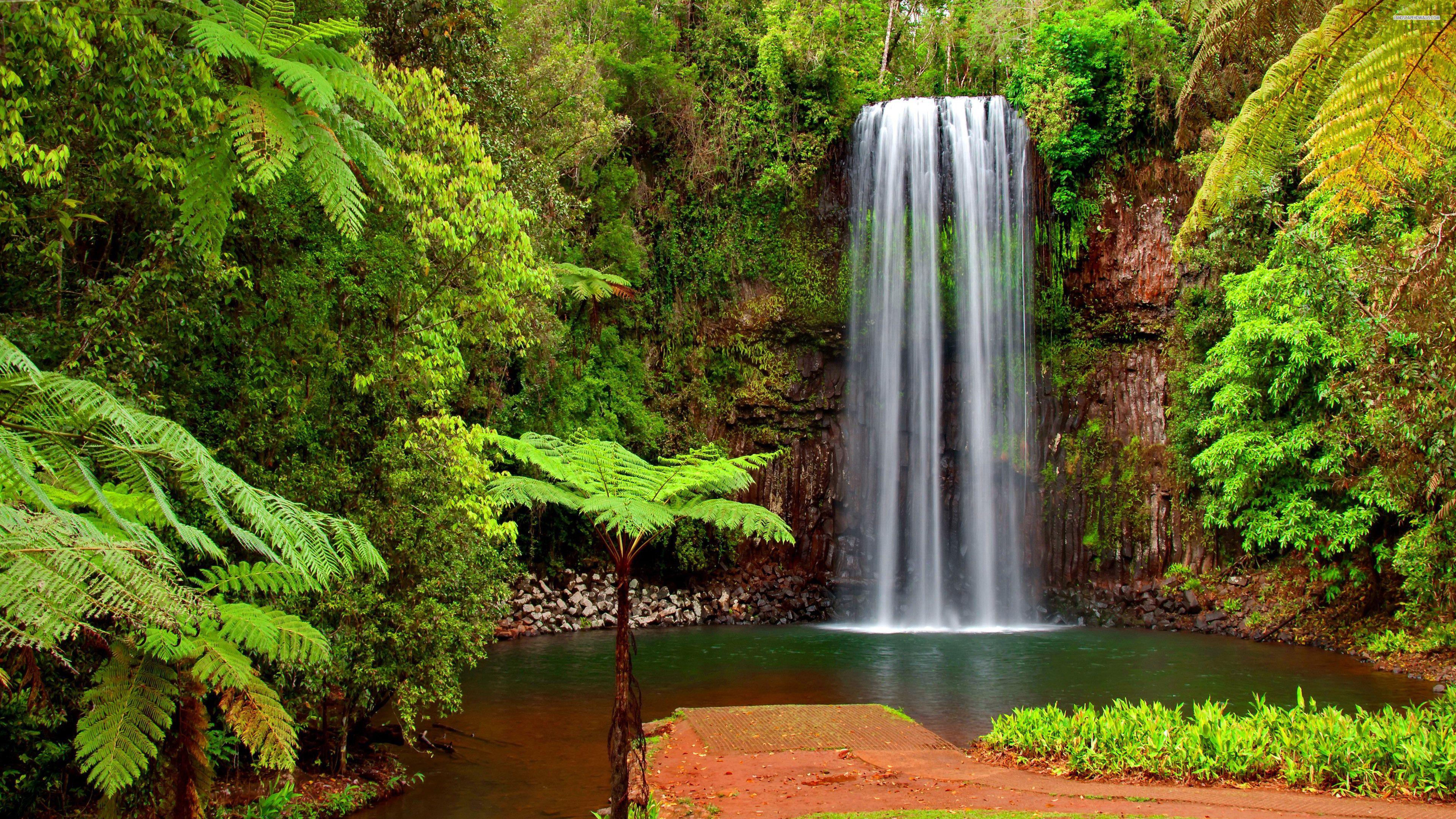 Hidden waterfall wallpaper 2938 Waterfall wallpaper