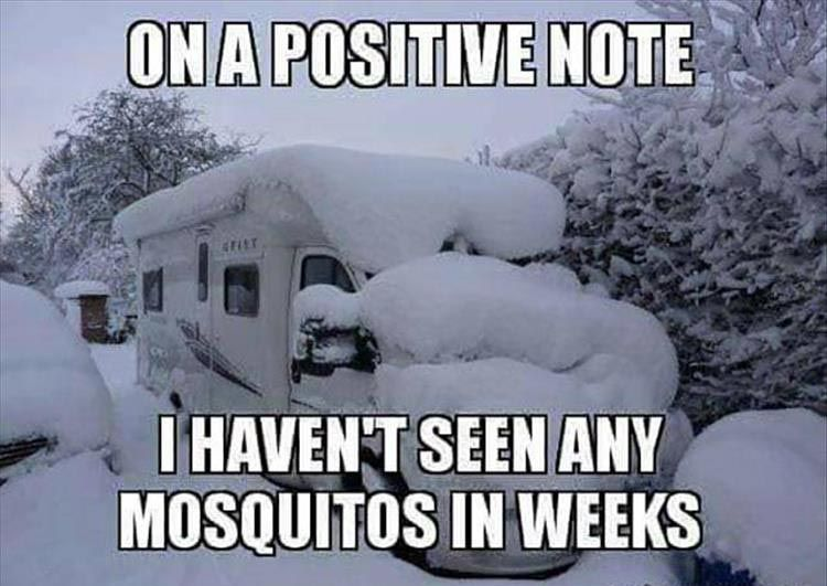 Funny Pictures Of The Day 38 Pics Funny Winter Quotes Winter Humor Camping Memes