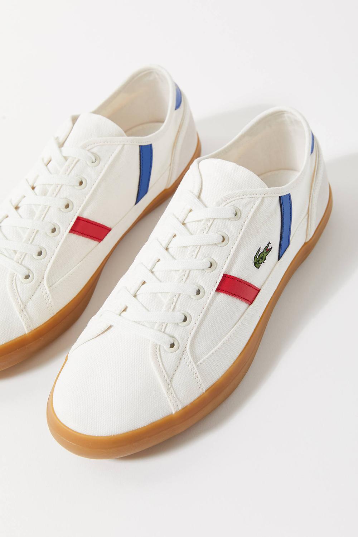 Lacoste Sideline Tricolor Sneaker
