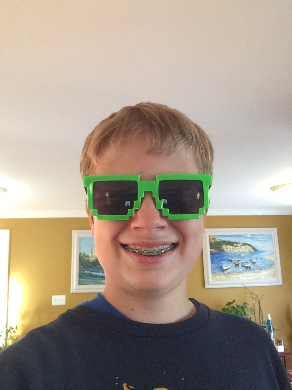 Minecraft shades