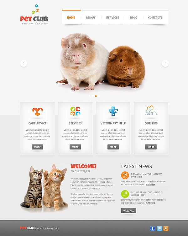 Veterinary Wordpress Theme | An outstanding set of templates you ...