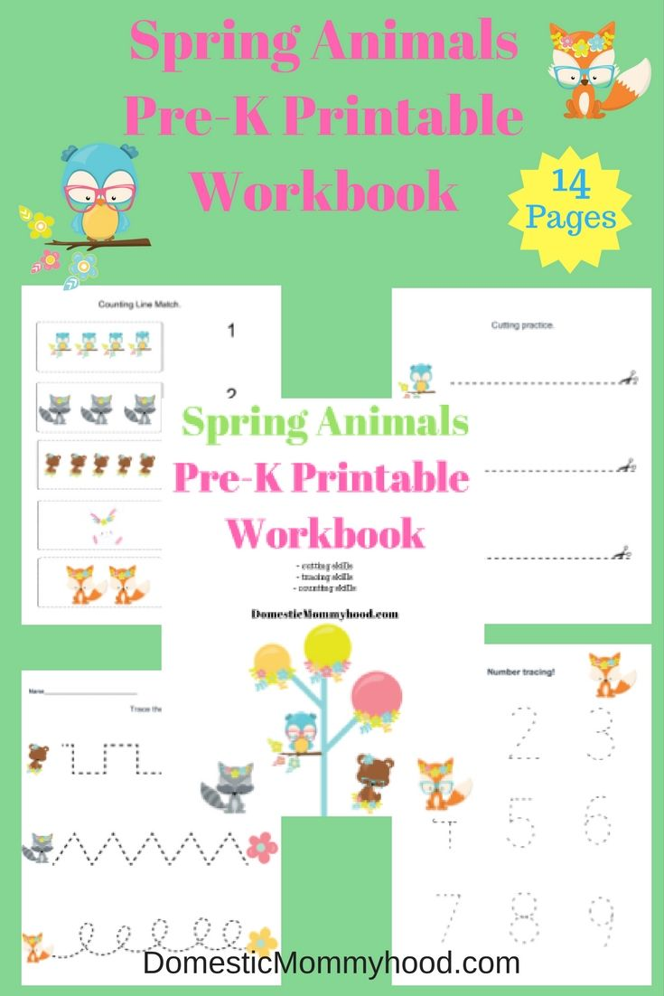 Workbooks prek workbooks : Spring Pre-K Themed Spring Animals Pre-K Printable Workbook | Epic ...