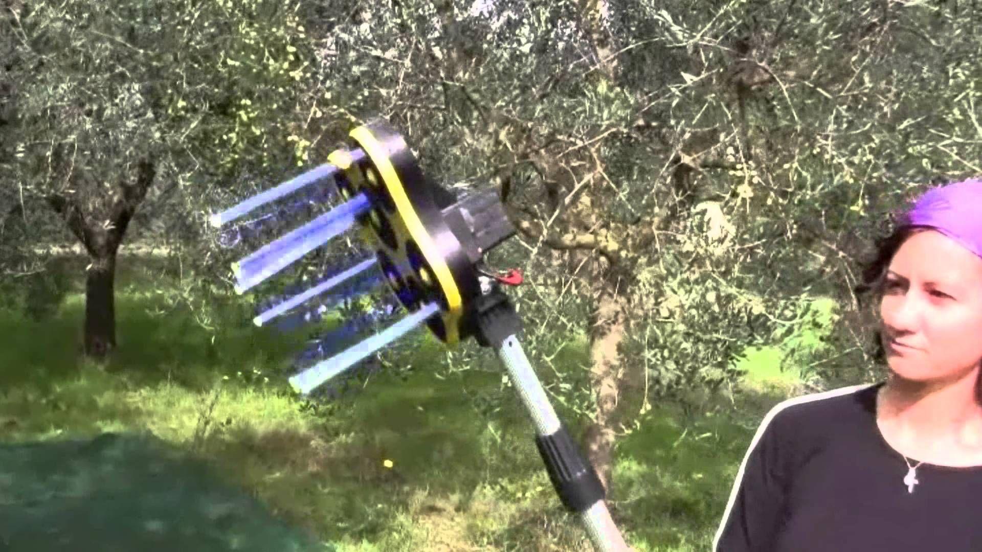 Scuotitore per la Raccolta delle Olive Macchine Elettriche per la Raccol...