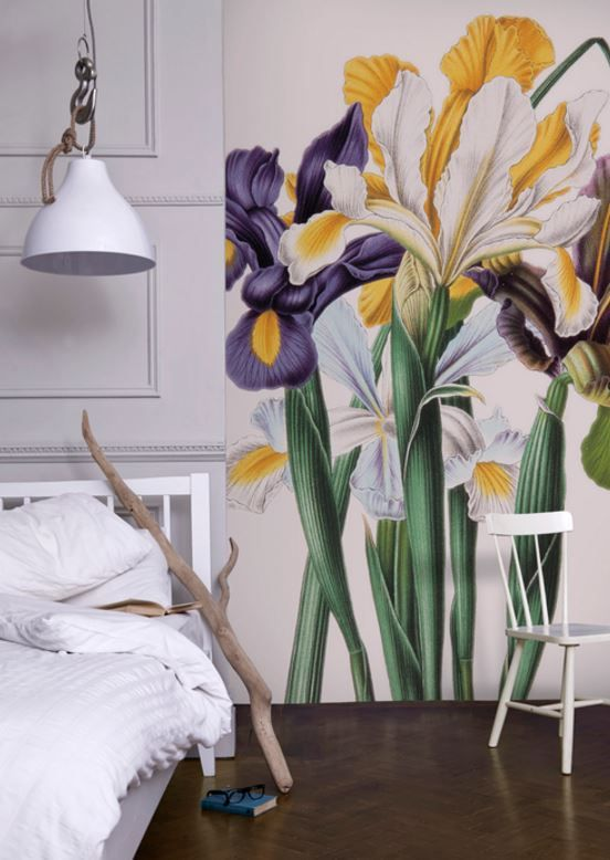 Iris Xiphium Mural By Hernfrid Witte Dreamy Decorative Walls