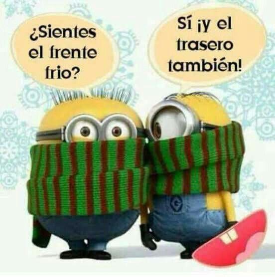 Frente Frio Imagenes Chistosas De Frio Memes De Frio Humor De Minions