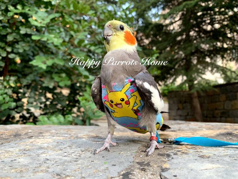 Made to Order Pikachu /& Pokeballs Pigeon Pants