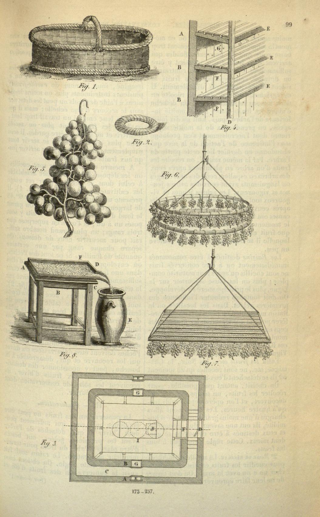 Conservation des fruits