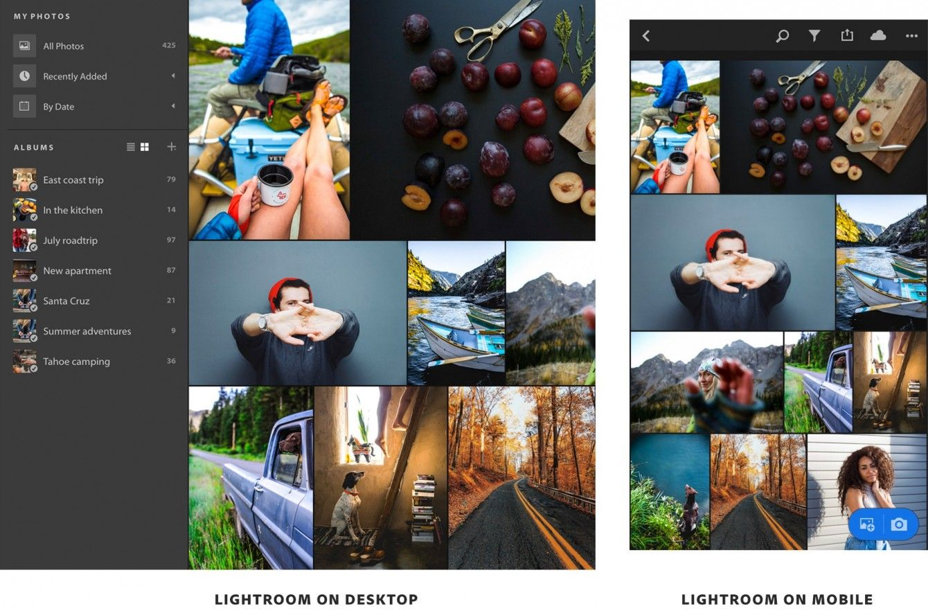 Lightroom Classic CC vs  Lightroom CC | Photo Software