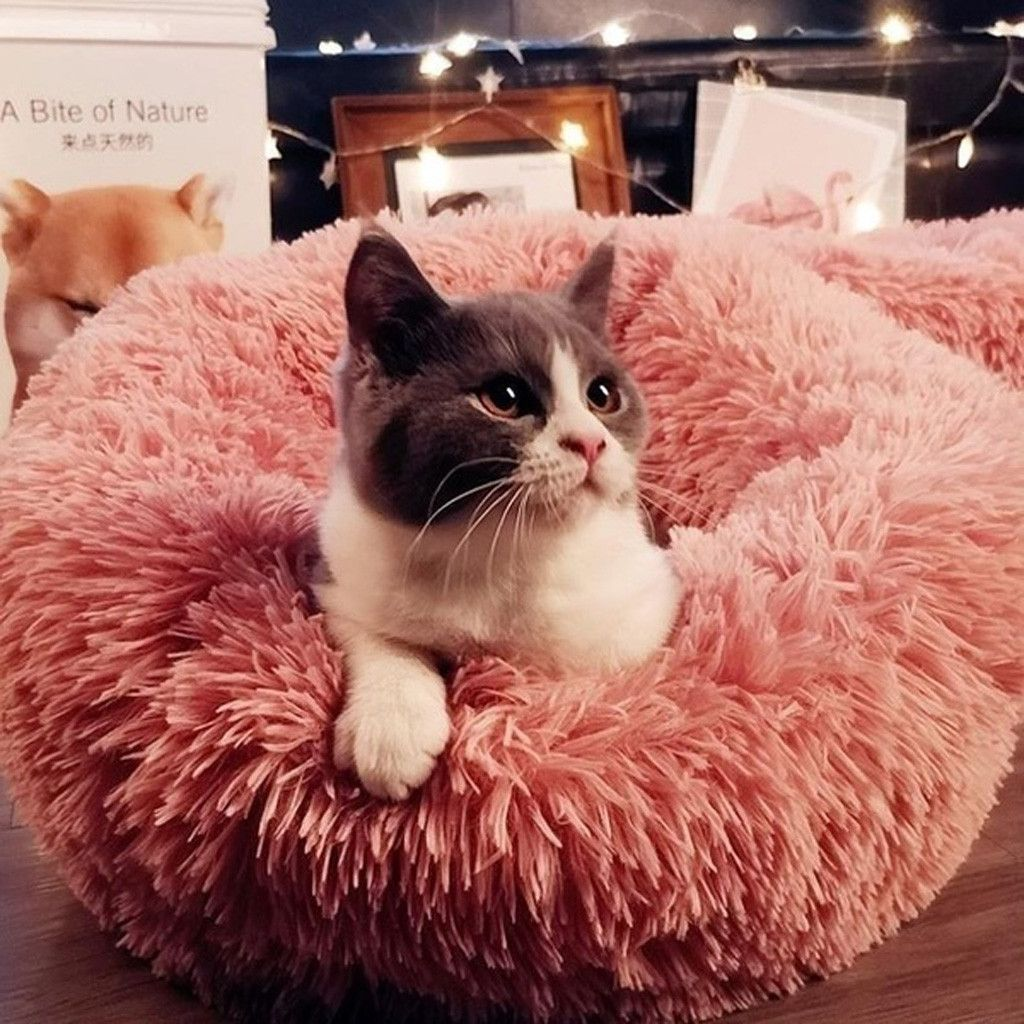Comfortable Plush Pet Sleeping Beds/ DogBedsCatBed